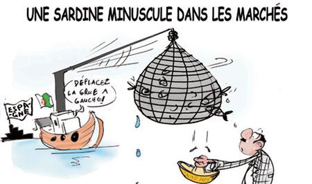 Une sardine minuscule dans les marchés - Dessins et Caricatures, Jony-Mar - La voix de l'Oranie - Gagdz.com