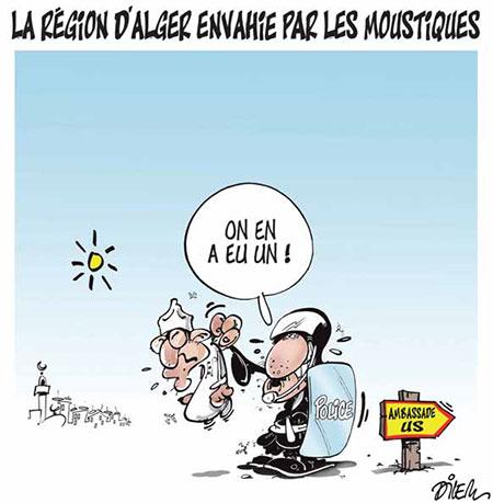 La région d'Alger envahie par les moustiques - Dessins et Caricatures, Dilem - Liberté - Gagdz.com