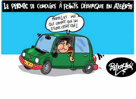 Le permis de conduire à points débarque en Algérie - Belkacem - Le Courrier d'Algérie, Dessins et Caricatures - Gagdz.com