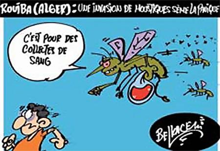 Rouiba (Alger): Une invasion de moustiques sème la panique - Belkacem - Le Courrier d'Algérie, Dessins et Caricatures - Gagdz.com
