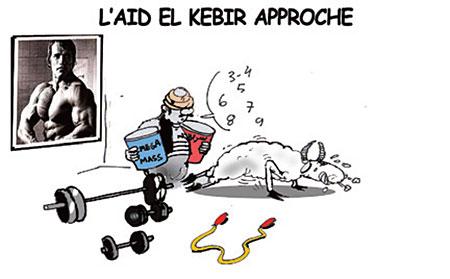 L'aïd el kebir approche - Dessins et Caricatures, Jony-Mar - La voix de l'Oranie - Gagdz.com