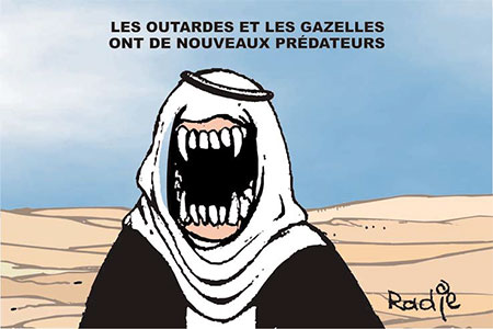 Les outardes et les gazelles ont de nouveaux prédateurs - Ghir Hak - Les Débats - Gagdz.com