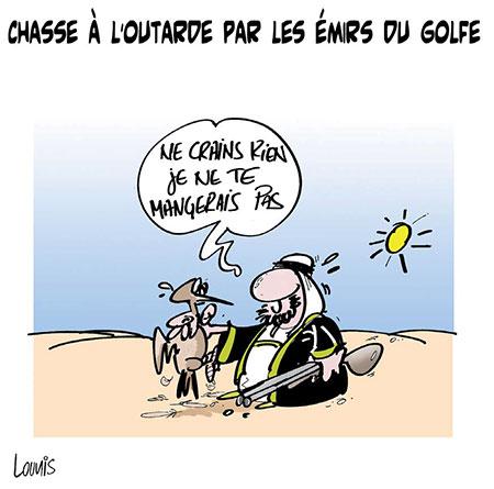 Chasse à l'outarde par les émirs du golfe - Lounis Le jour d'Algérie - Gagdz.com
