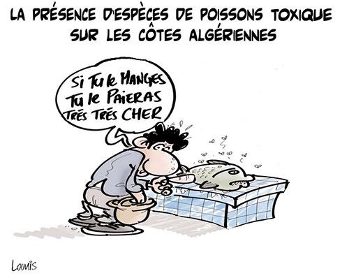 La présence d'espèces de poissons toxiques sur les côtes algériennes - Lounis Le jour d'Algérie - Gagdz.com
