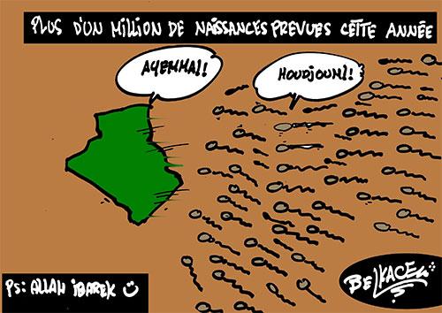 Plus d'un million de naissances prévues cette année - Belkacem - Le Courrier d'Algérie - Gagdz.com