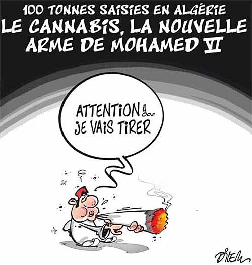 100 tonnes saisies en Algérie: Le cannabis, la nouvelle arme de Mohamed VI