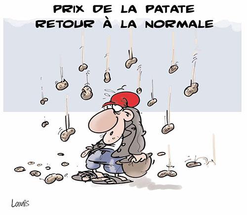 Prix de la patate: Retour à la normale - Lounis Le jour d'Algérie - Gagdz.com
