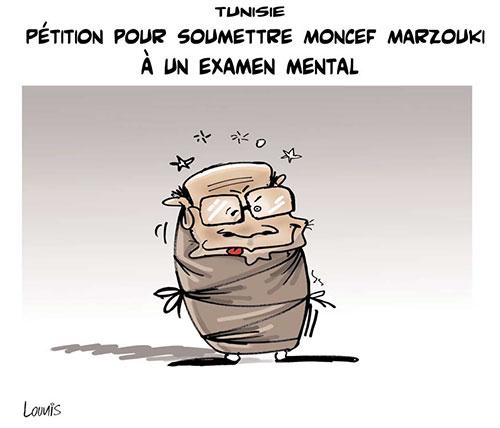 Tunisie: Pétition pour soumettre Moncef Marzouki à un examen mental