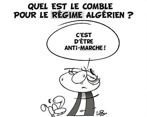 Quel est le comble pour le régime algérien ? - Vitamine - Le Soir d'Algérie - Gagdz.com