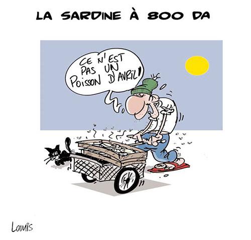 La sardine à 800 da - Lounis Le jour d'Algérie - Gagdz.com