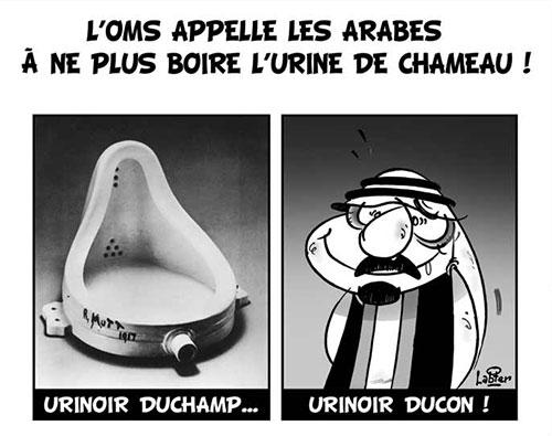 L'OMS appelle les arabes à ne pas boire l'urine de chameau - Vitamine - Le Soir d'Algérie - Gagdz.com