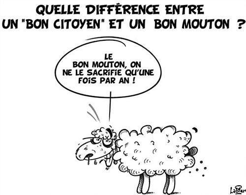 Quelle différence entre un bon vitoyen et un bon mouton ?