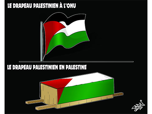 Le drapeau palestinien - Sadki - Le provincial - Gagdz.com