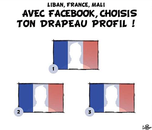 Liban, France, Mali: Avec facebook, choisis ton drapeau profil - Vitamine - Le Soir d'Algérie - Gagdz.com