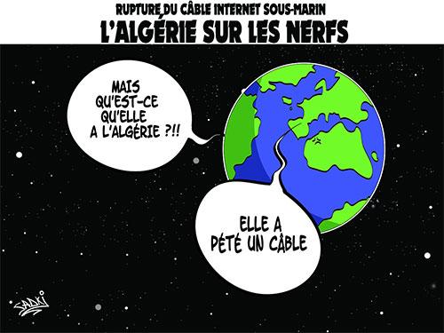 Rupture du câble internet sous-marin: L'Algérie sur les nerfs - Sadki - Le provincial - Gagdz.com