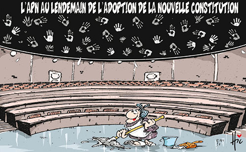 L'apn au lendemain de l'adoption de la nouvelle constitution