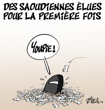 Caricature dilem TV5 du Mardi 15 décembre 2015