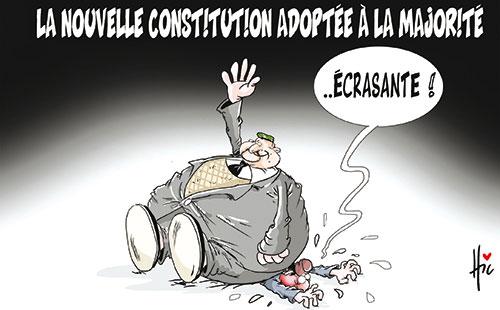 La nouvelle constitution adoptée à la majorité