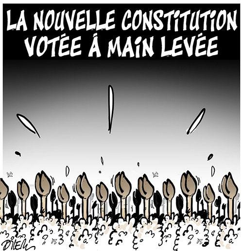 La nouvelle constitution votée à main levée