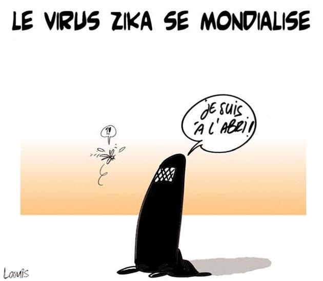 Le virus zika se mondialise