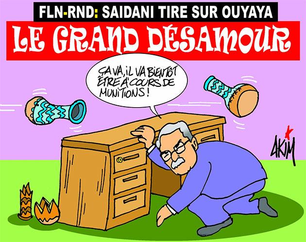Fln-Rnd: Saidani tire sur Ouyahia
