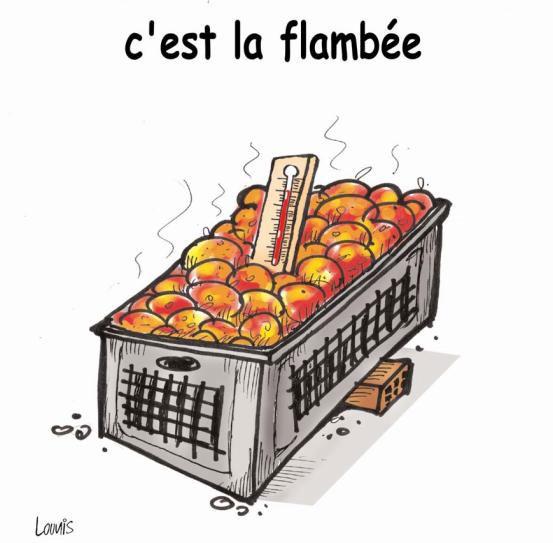 C'est la flambée
