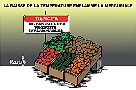 La baisse de la température enflamme la mercuriale