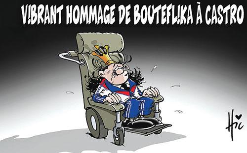 Vibrant hommage de Bouteflika à Castro