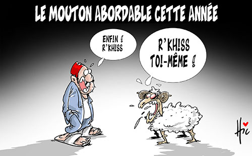 Le mouton abordable cette année
