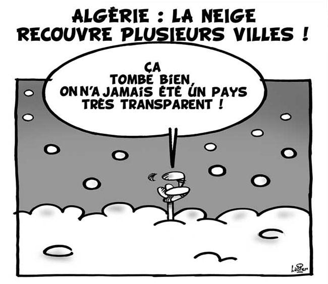 Algérie: La neige recouvre plusieurs villes