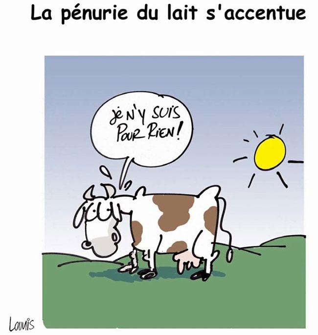 La pénurie du lait s'accentue