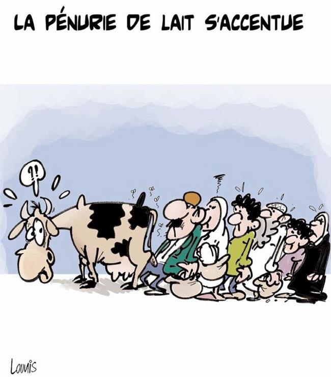La pénurie de lait d'accentue