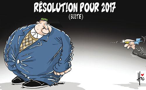 Résolution pour 2017 (suite)
