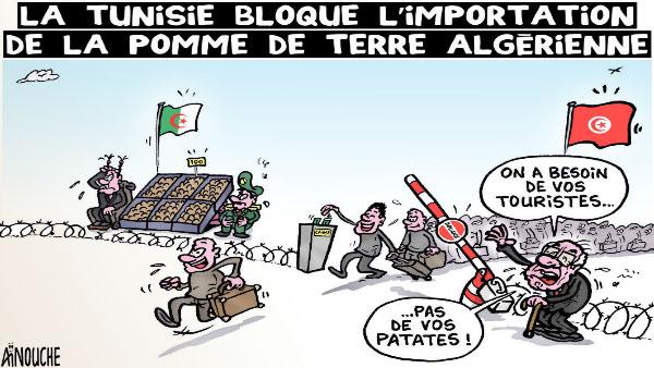 La Tunisie bloque l'importation de la pomme de terre algérienne