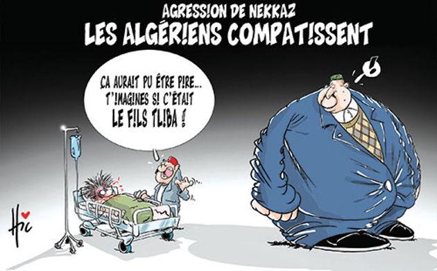 Agression de Nekkaz: Les Algériens compatissent