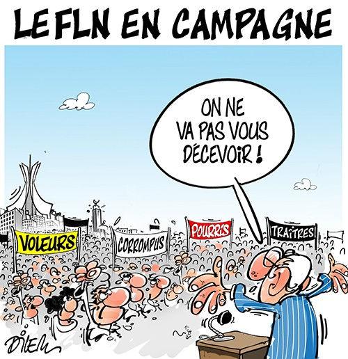 Le FLN en campagne