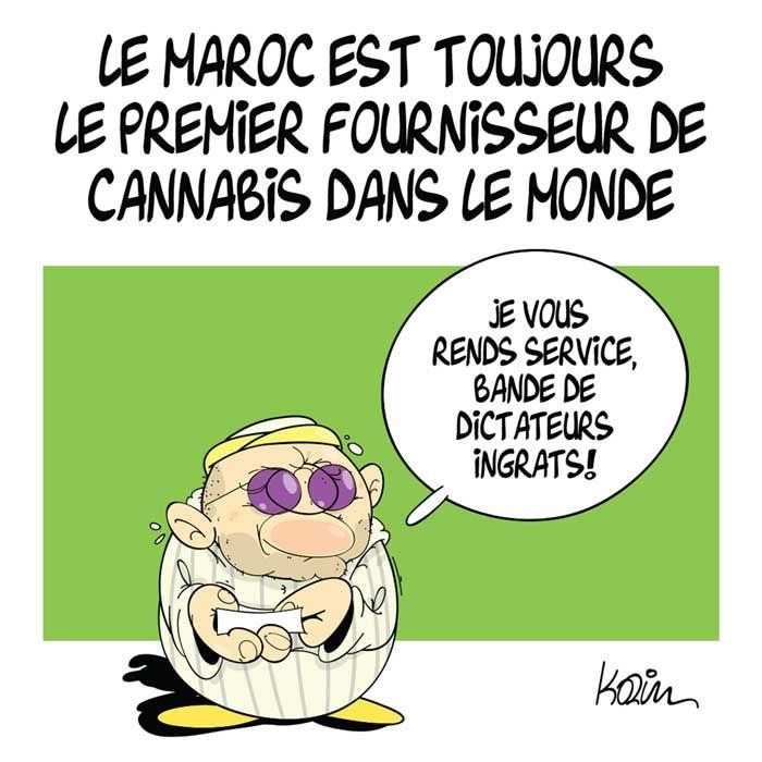 Le Maroc est toujours le premier fournisseur de cannabis dans le monde