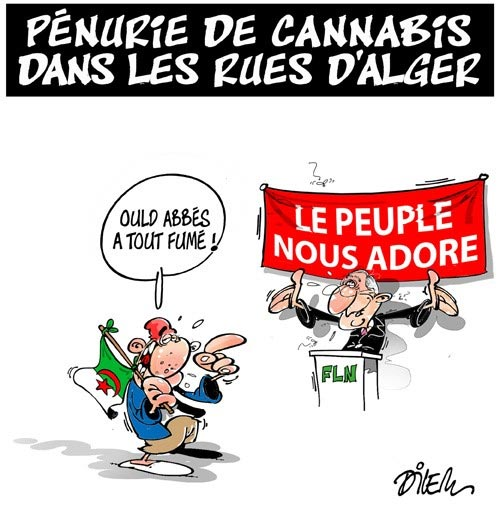 Pénurie de cannabis dans les rues d'Alger