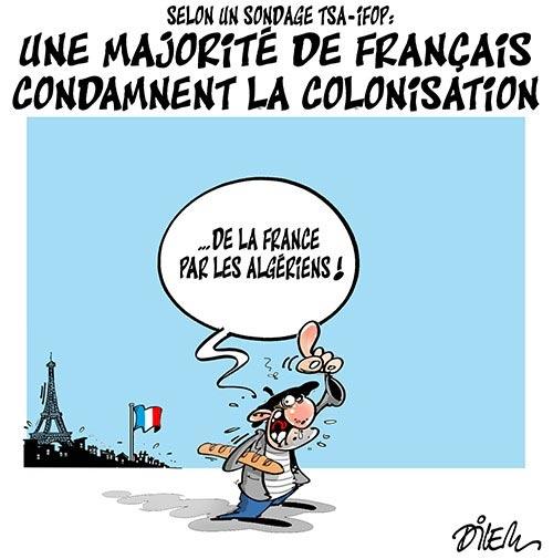 Selon un sondage TSA-IFOP: Une majorité de français condamnent la colonisation