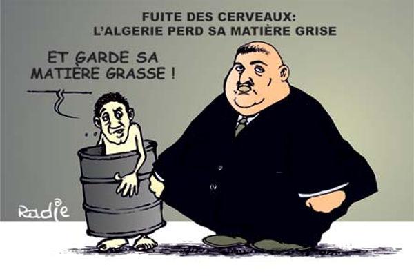 Fuite de cerveaux: L'Algérie perd sa matière grise