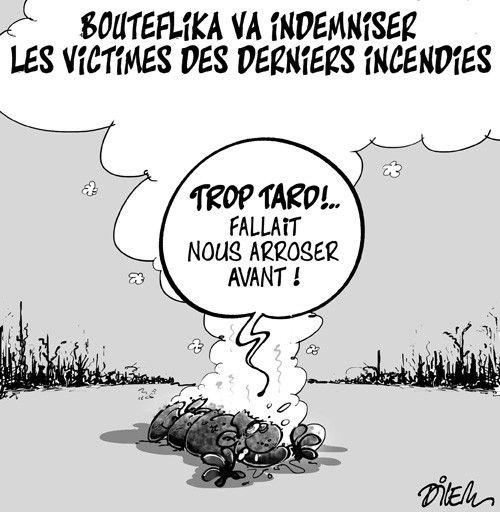 Bouteflika va indemniser les victimes des derniers incendies