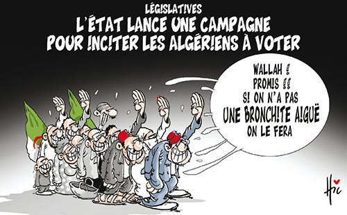 Législatives: L'état lance une campagne pour inciter les algériens à voter