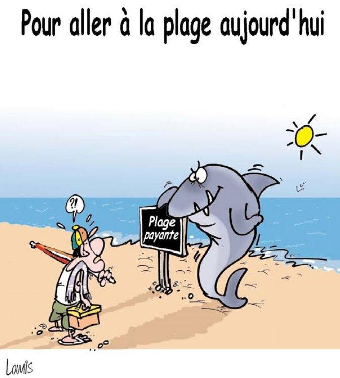 Pour Aller à La Plage Aujourd Hui Caricatures Et Humour