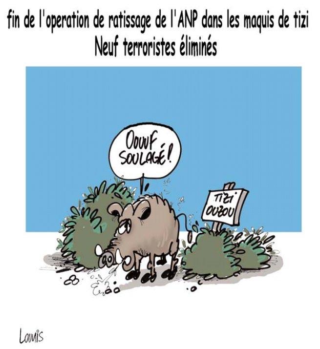 Fin de l'operation de ratissage de l'ANP dans les maquis de Tizi: Neuf terroristes éliminés