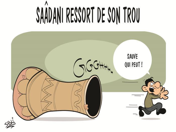 Saâdani ressort de son trou