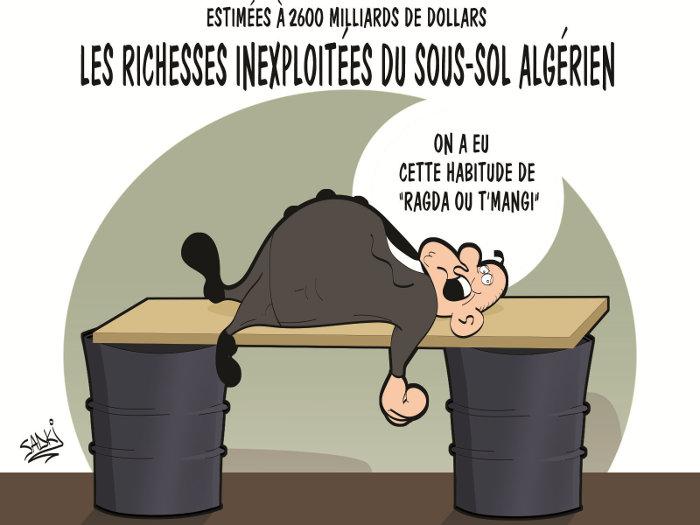 Estimées à 2600 milliards de dollars: Les richesses inexploitées du sous-sol algérien