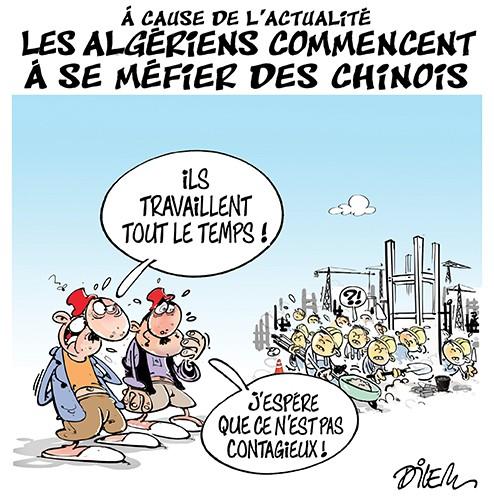 A cause de l'actuatlité les algériens commencent à se méfier des chinois - Dilem - Liberté - Gagdz.com