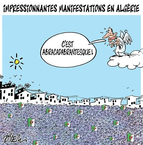 Impressionnantes manifestations en Algérie - Dilem - Liberté - Gagdz.com