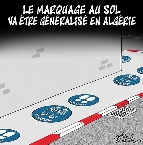 Le marquage au sol va être généralisé en Algérie - Dilem - Liberté - Gagdz.com