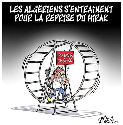 Les algériens s'entraînentpour la reprise du Hirak - Dilem - Liberté - Gagdz.com